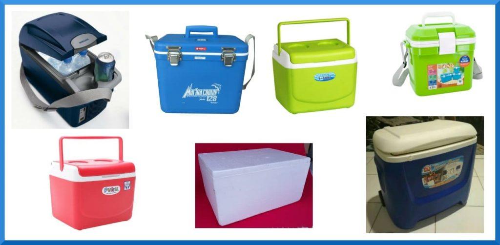 Cooler Box Terbaik