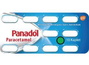 Obat Sakit Kepala GSK Panadol Regular