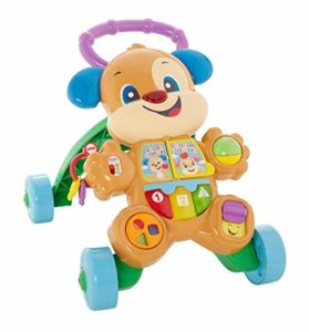 Baby Walker Fisher-Price